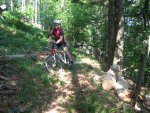 ciciway laengster singletrail im naturparkthal 12 20140415 1861662778
