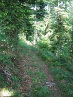 ciciway laengster singletrail im naturparkthal 27 20140415 1563676838
