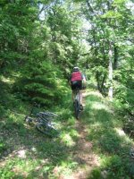 ciciway laengster singletrail im naturparkthal 29 20140415 1318412733