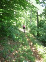 ciciway laengster singletrail im naturparkthal 33 20140415 1024494072