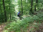 ciciway laengster singletrail im naturparkthal 35 20140415 1329768478