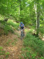 ciciway laengster singletrail im naturparkthal 36 20140415 1589993844