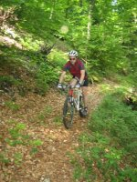 ciciway laengster singletrail im naturparkthal 37 20140415 2018635548
