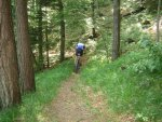 ciciway laengster singletrail im naturparkthal 38 20140415 1412210096