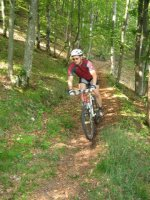 ciciway laengster singletrail im naturparkthal 39 20140415 1186199166