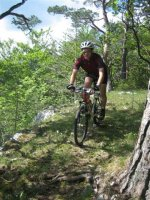 ciciway laengster singletrail im naturparkthal 4 20140415 1645388657