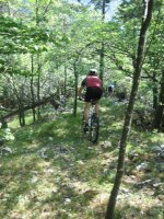 ciciway laengster singletrail im naturparkthal 5 20140415 1810914021